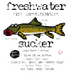 Sucker Fish ID T-Shirt-On Sale!